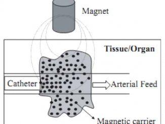 Akbarzadeh et al., Nanoscale Res Lett. 2012; 7(1): 144.