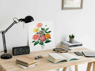 Digital Detox, Schreibtisch mit Büchern